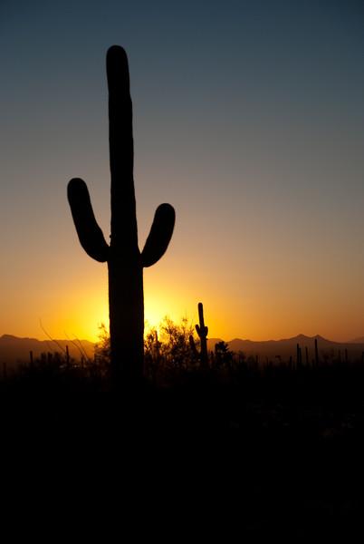 Tucson, Az - Oct 1, 2009-0017.jpg
