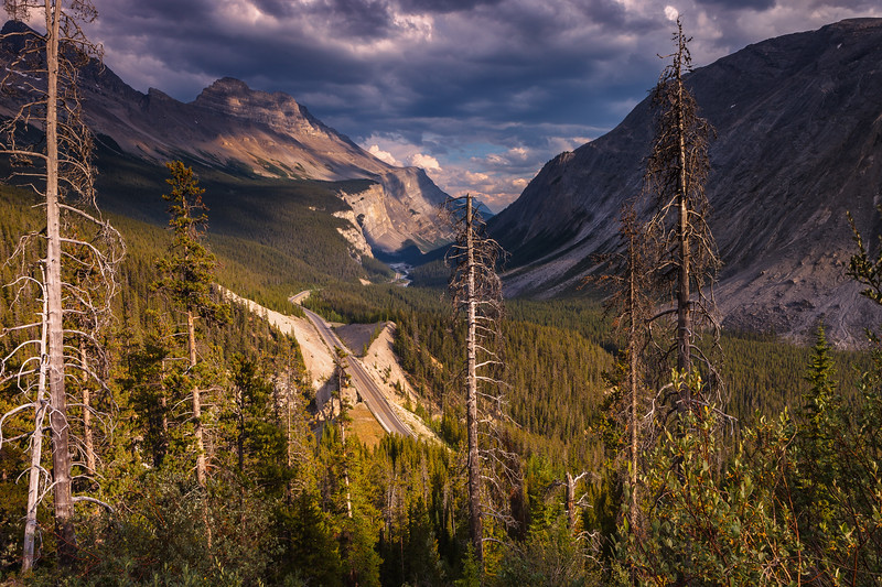 Icefields Parkway, Banff National Park. Alberta, Canada.