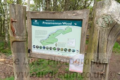 2021 Pressmennan Woods
