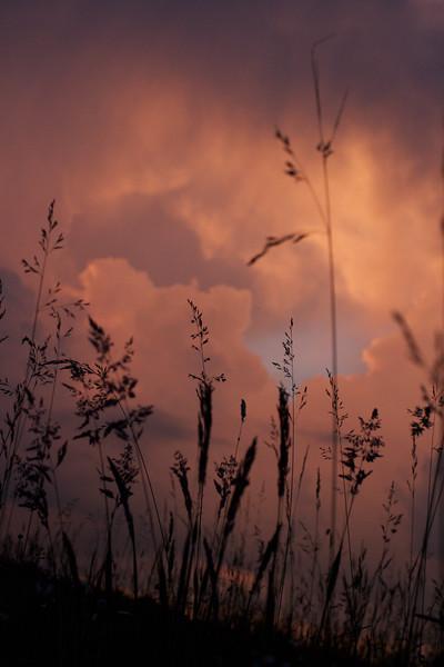 red-clouds-dawn_8777591097_o.jpg