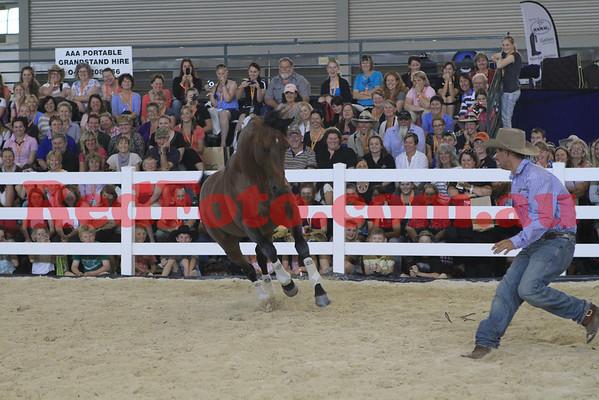 2011 11 10 Equitana Double_Dan_Shows
