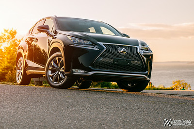 Lexus NX Launch Event