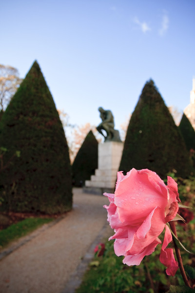 "Rodin's ""The Thinker"" in the gardens at the Rodin Museum"