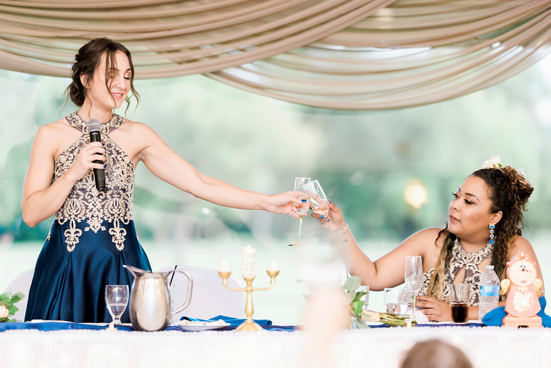 melissa-kendall-beauty-and-the-beast-wedding-2019-intrigue-photography-0397.jpg