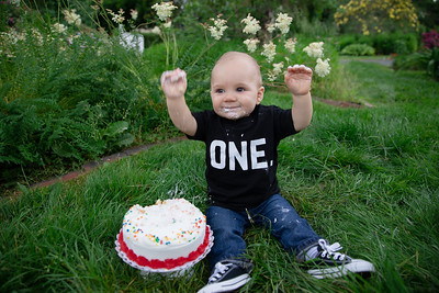 Asher Conroy Baby First Birthday Cake Smash Family Spring Portraits Outdoor Nature Natural Happy Candid Mom Dad Love Pretty Enfield Ct Conn Connecticut Suffield Agawam Ma Mass Massachusetts Westfield Mill Crane Pond Baby Photos Professional P