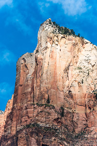 Zion National_2823