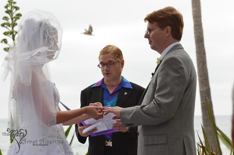 Laura & Sean Wedding-2382.jpg