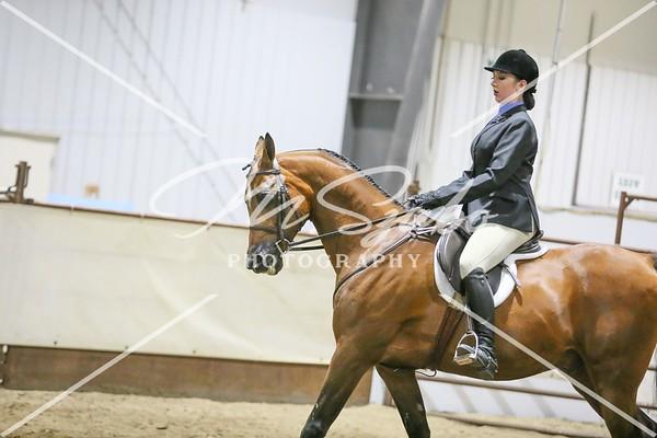 Under Saddle Classes Morning