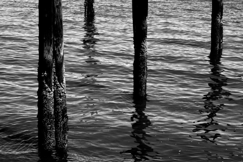 070704-015BW (Abstract; Pilings, Tide).jpg