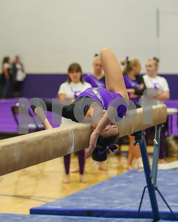 Awest Gymnastics 2018