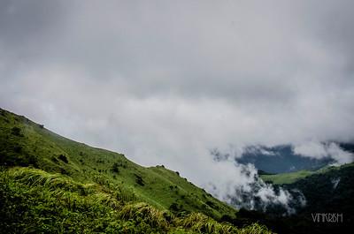 Tadiandamol, Karnataka