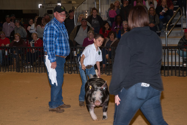 Woodward District Livestock Show