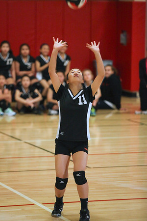 Presidio Panthers Volleyball 2014