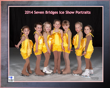 2014 Seven Bridges Ice Show