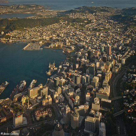 Wellington from Above 2008