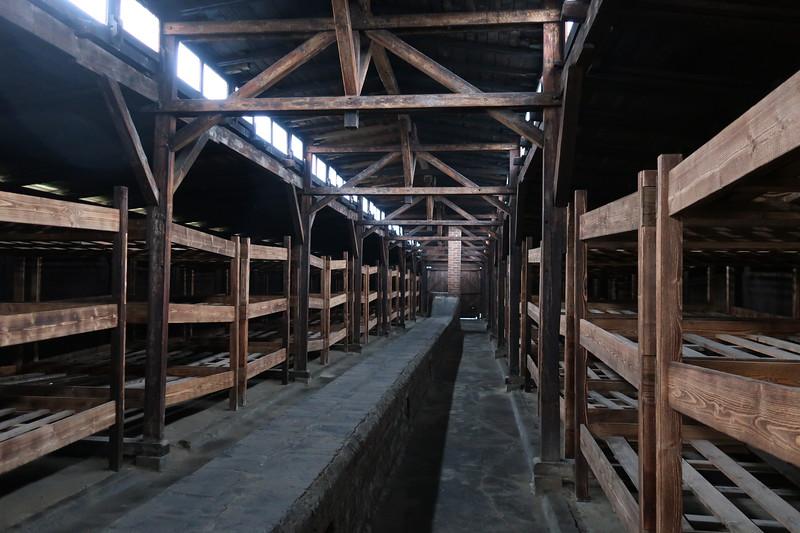 Auschwitz -Birkenau9.JPG