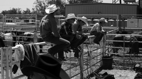 2011 SALINAS BEHIND THE CHUTES