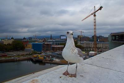 Oslo Adventures September 2018