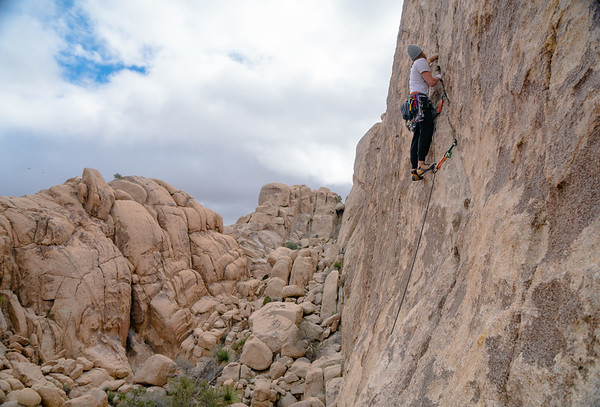 Joshua Tree Climbing and Flowers