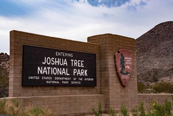 Joshua Tree Oct 2016