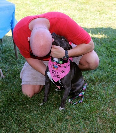 2015  Walk For Paws