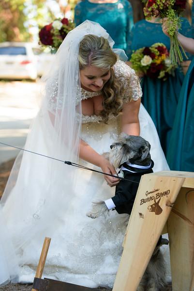 7629_d810a_Tara_and_Tony_Pema_Osel_Ling_Watsonville_Wedding_Photography.jpg
