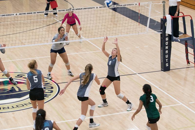 HPU Volleyball-92975.jpg