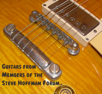 Guitars from Steve Hoffman Forum