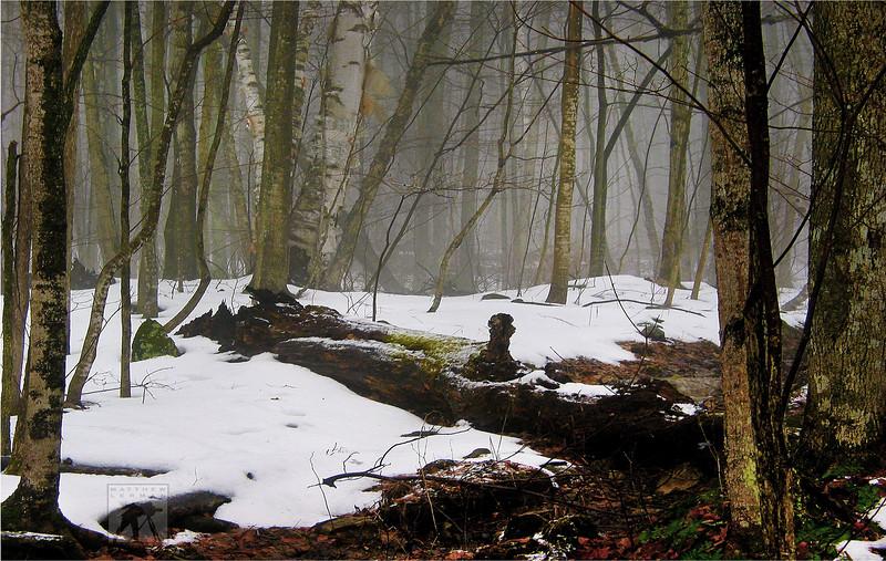 166 Snow Fog Manchester LoRes.jpg