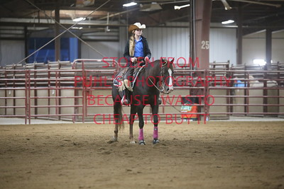 69. Youth Ranch Reining