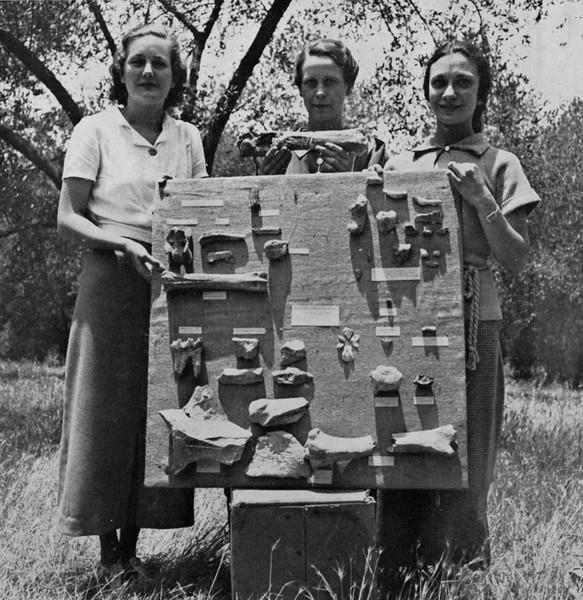 1936-07-CAHiPub-7.jpg