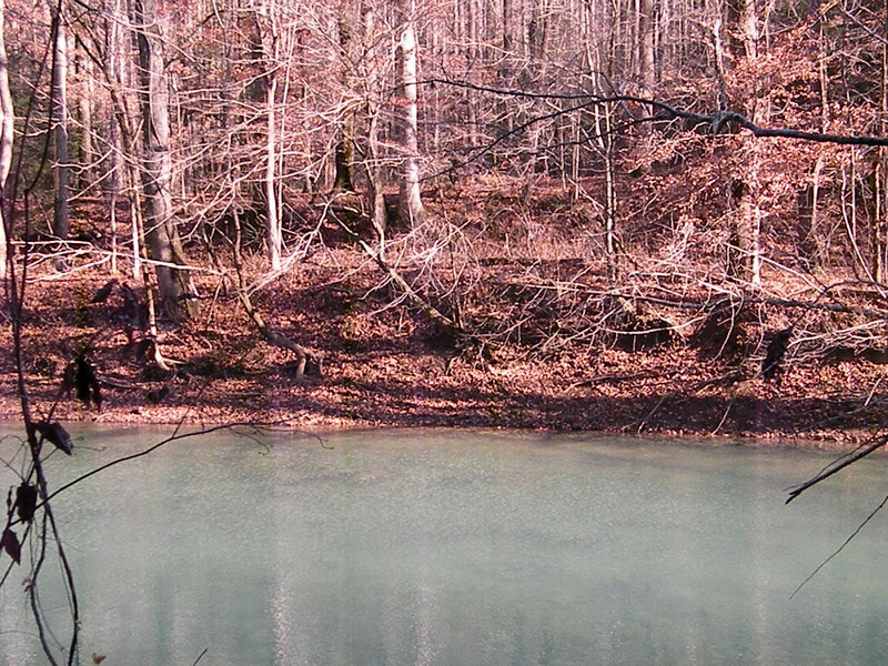 River Trail 223.jpg
