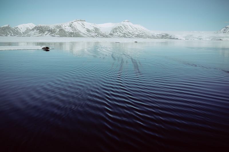 Svalbard-2013-39.jpg