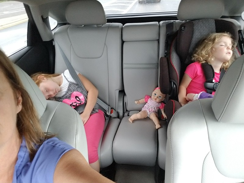 A long morning of travel, they did great. Needed a little nap on the way to our house.