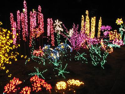 2007/12 - Botanical Gardens Holiday Lights