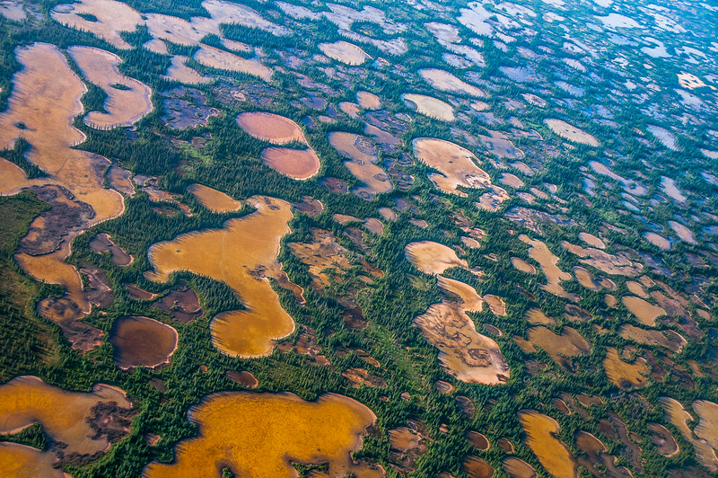 Aerial shot of Wood Buffalo National Park, Canada