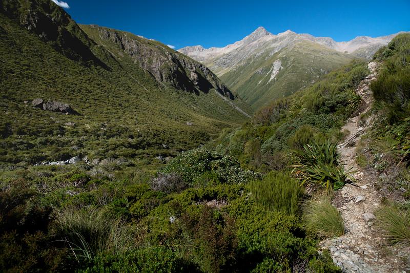 arthurs pass trail-1.jpg