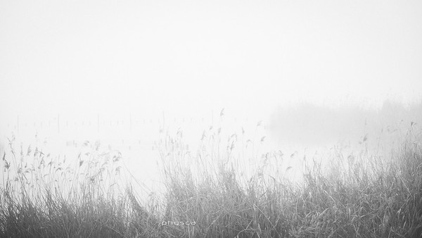 191231 :: Dans la brume