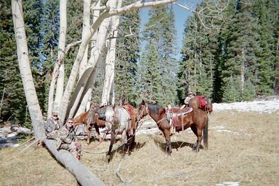 Colorado Elk Hunt - October 2005