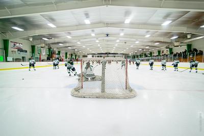 2014-02-08 LDC Girls Hockey