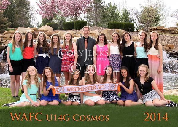 WAFC U14G Cosmos Team 2014