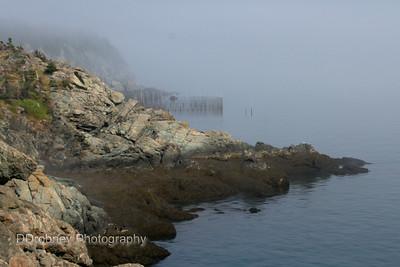 Grand Manan Island, NB - 2014