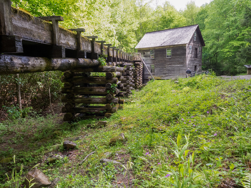 a log mill building sits in the green forest