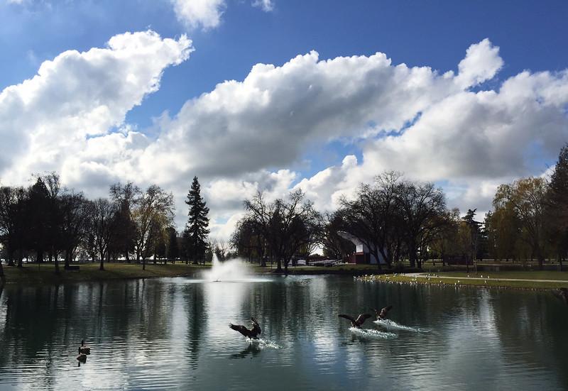 park clouds.jpg