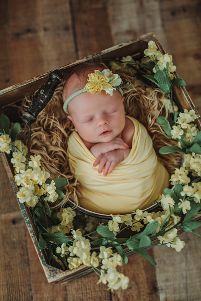 Eva newborn 2018