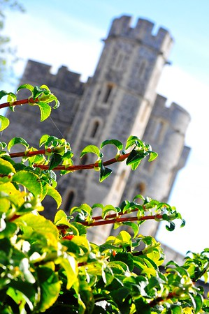 Windor Castle (Berkshire, England)