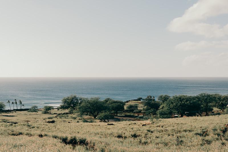 Hawaii20-424.jpg