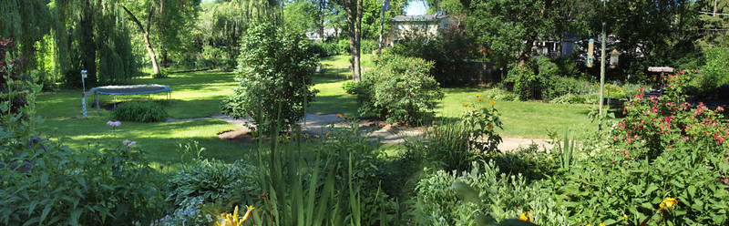 View of water, gardens & mature trees in fully fenced backyard from covered patio.