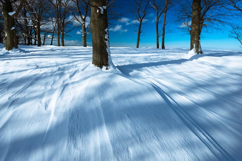 Winter scenes-5.jpg