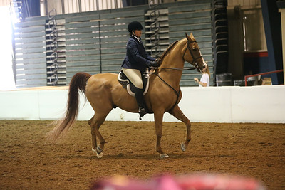 34 939 Hunt Seat Equitation 18 & Under